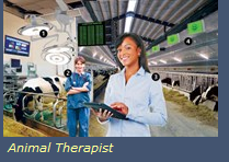 Funding and Information Image (Animal Therapist)